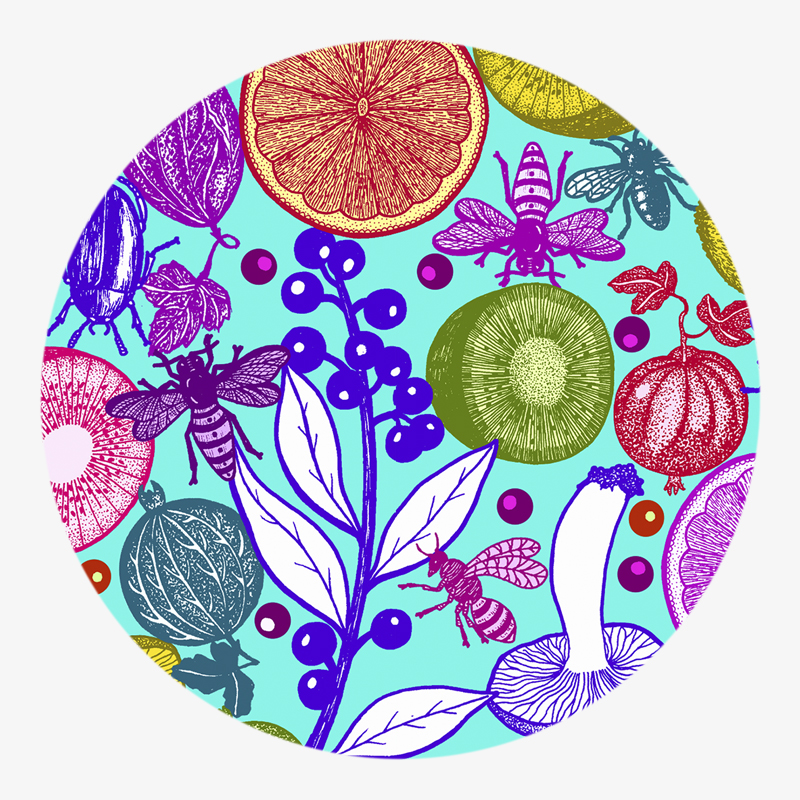 Visuel 03 de la collection Salade de fruit I