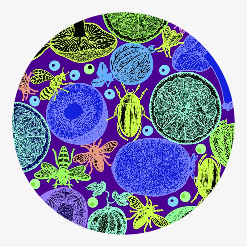 Visuel 02 de la collection Salade de fruit II