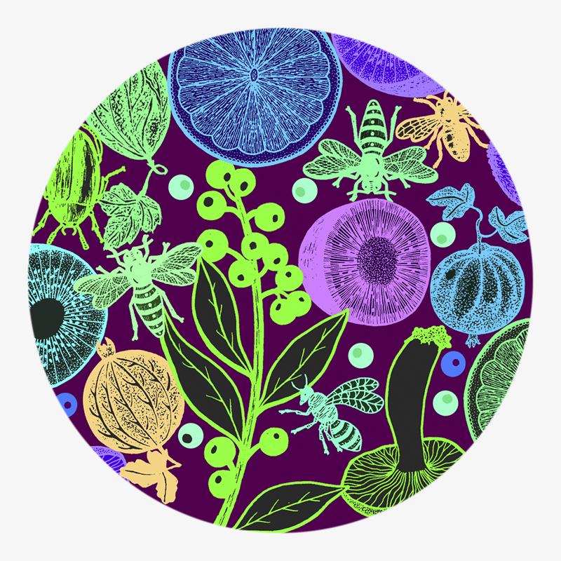 Visuel 03 de la collection Salade de fruit II