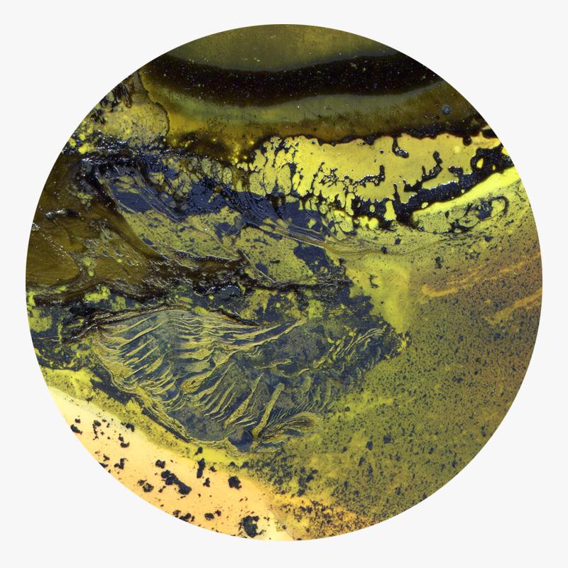 Visuel 01 de la collection Ool Green