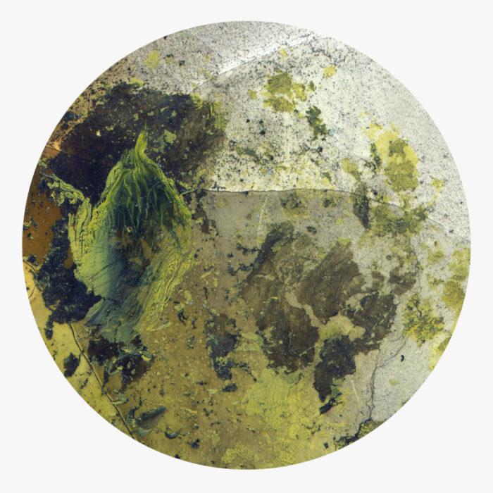 Visuel 02 de la collection Ool Green