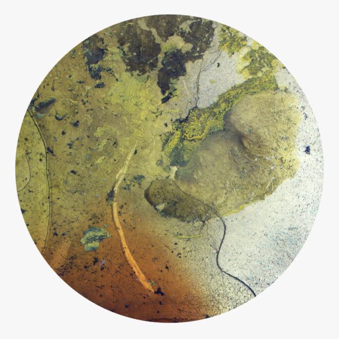Visuel 03 de la collection Ool Green