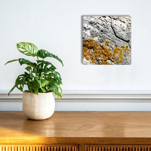 oeuvre-Venimous-OKTO-plaque-aluminium-mural